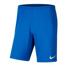 Nike Dry Park III shorty 463